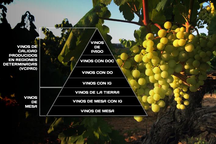 Категории качества испанских вин