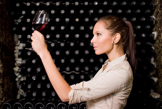 catar-vino