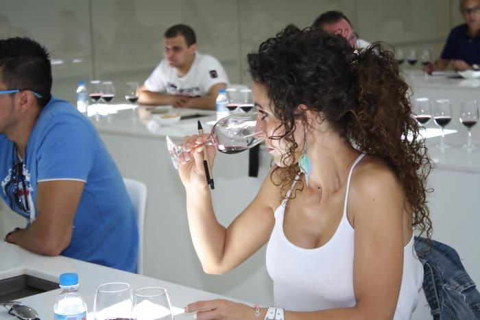 XXII curso de Sumillería, en Ribera del Duero