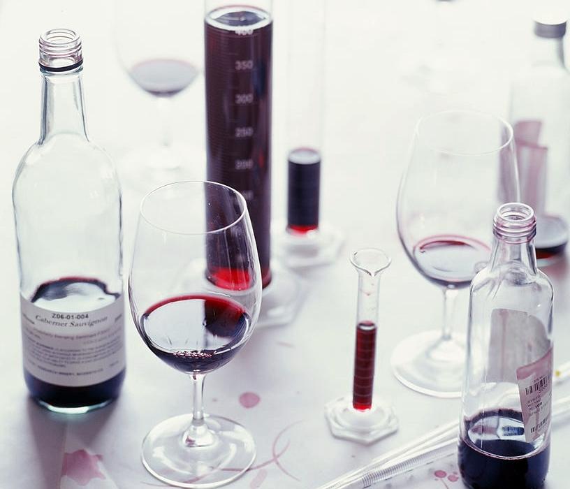 vino_y_ciencia