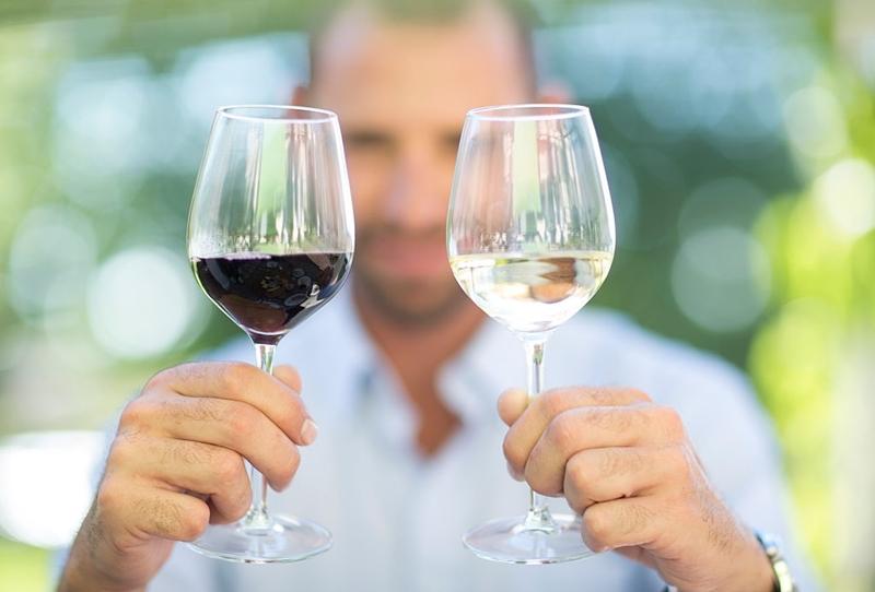 Qu tipo de copa debemos usar para el vino for Copa vino blanco
