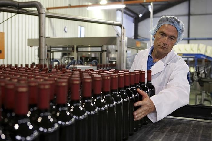 produccion_vino