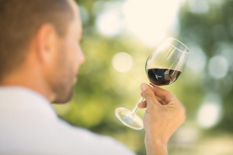 vinos de culto