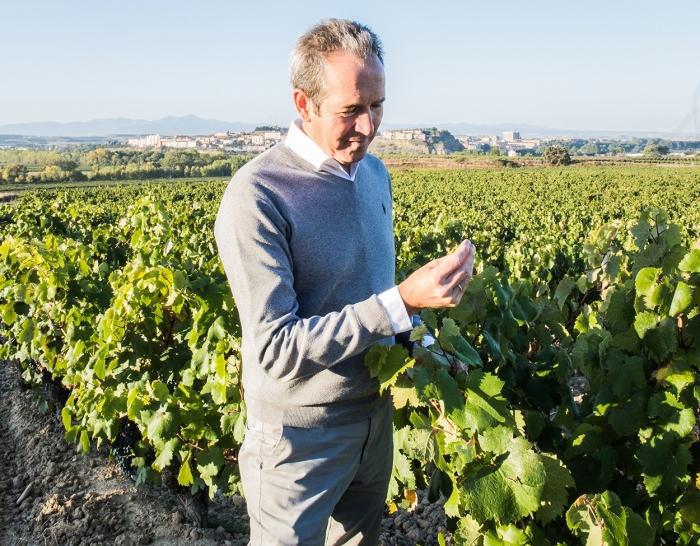 Manual de viticultura en Youtube de la mano de Agustín