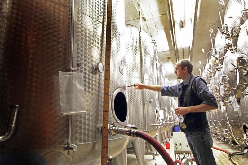 ejemplos de los avances tecnológicos en el sector vitivinícola | Noticias de Buenaventura, Colombia y el Mundo