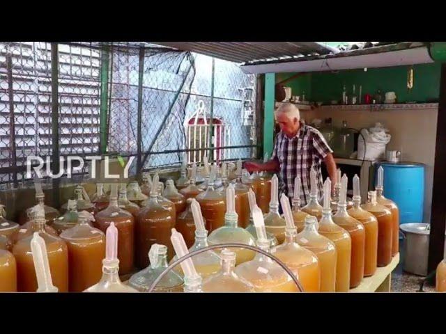 Cuba: Esta bodega utiliza CONDONES  para producir su vino